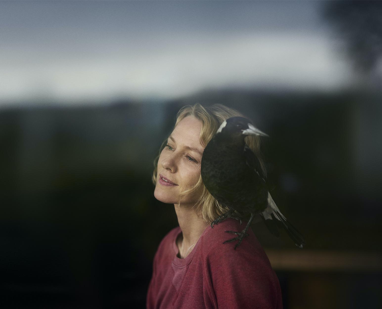 Australian film Penguin Bloom is selected for Toronto